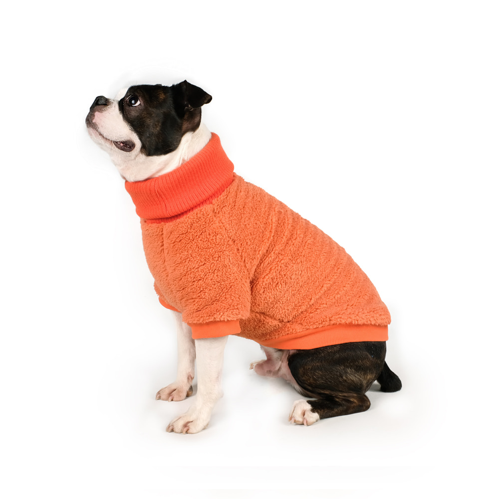 COZY TURTLENECK / ORANGE