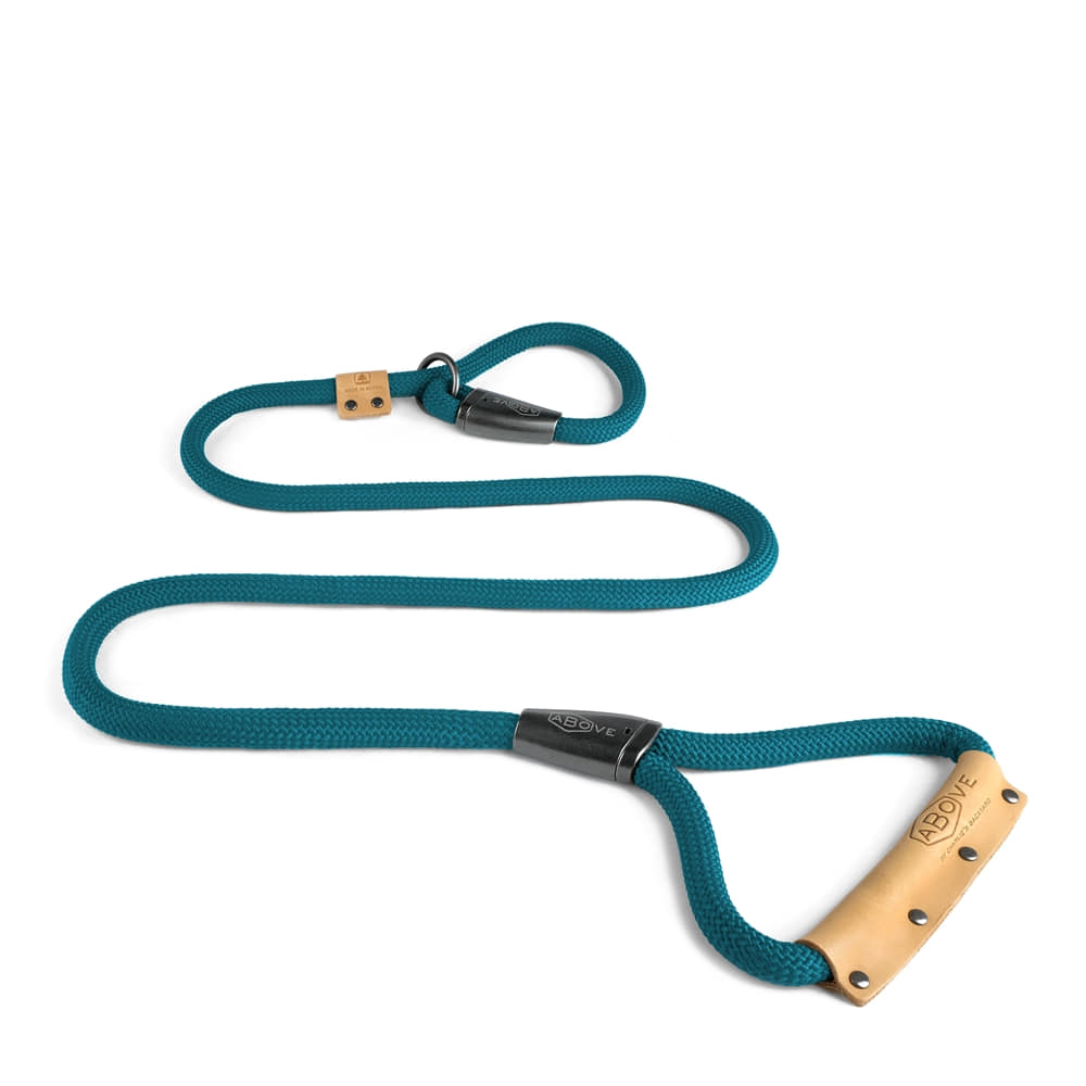 ABOVE SLIP LEASH / BLUE