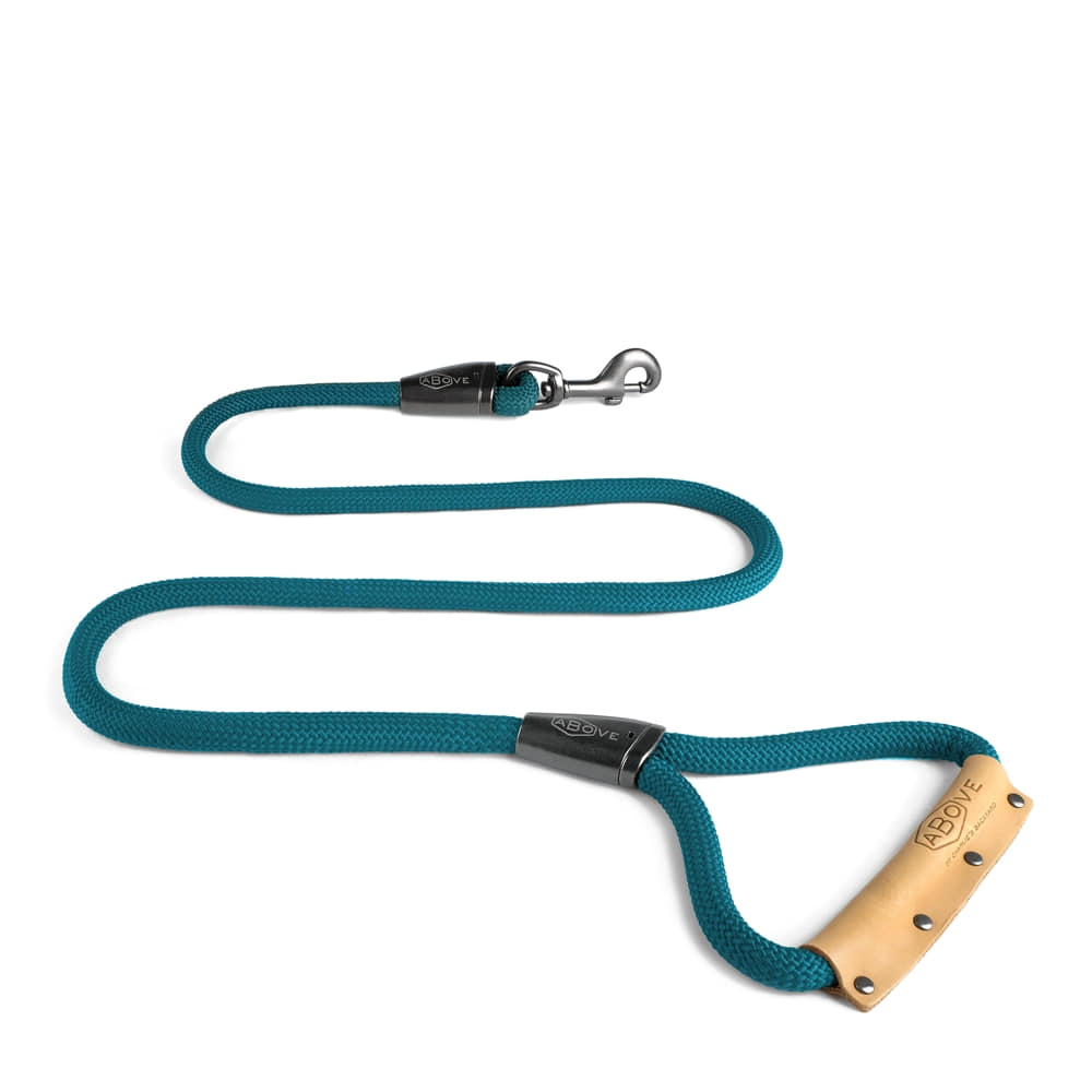 ABOVE LEASH / BLUE