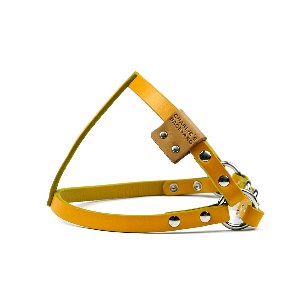 CLASSIC LEATHER HARNESS / YELLOW