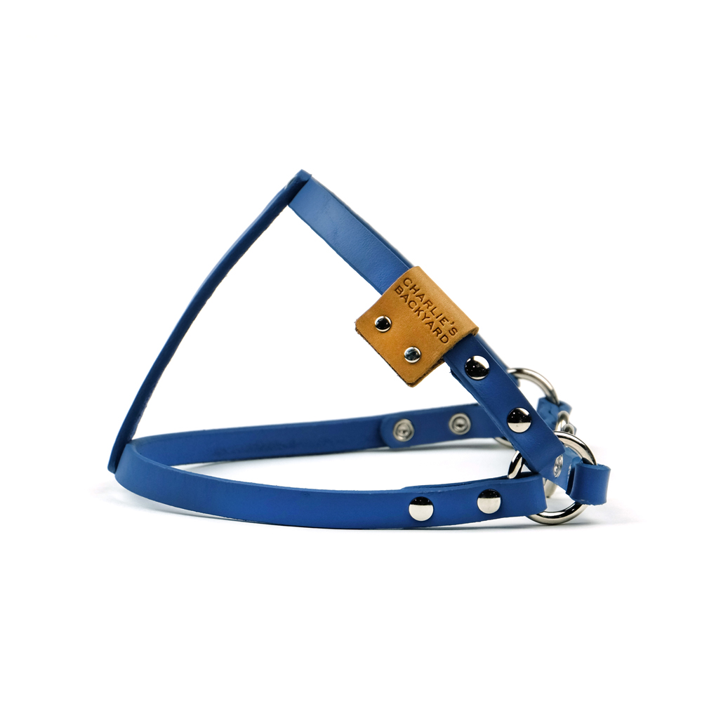 CLASSIC LEATHER HARNESS / BLUE