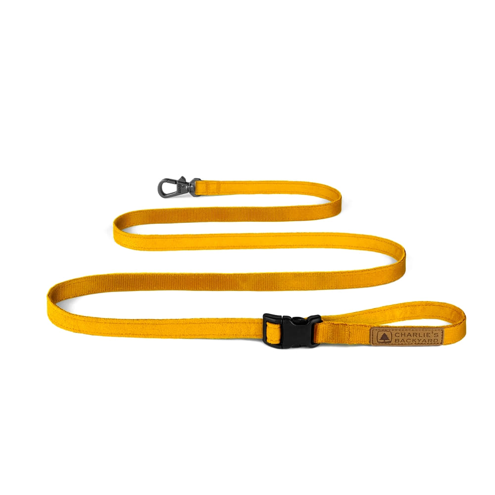EASY LEASH / YELLOW